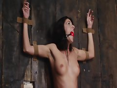 Bondage slutty girl is tied to a wall and gagged