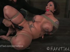 Plumper claire dames in wild bdsm