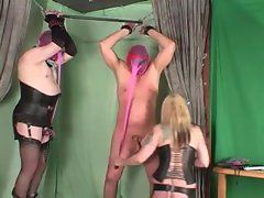 Mistress has two lads bound to play with them