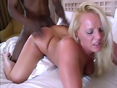 Black stud creampies Alexis Golden