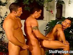 Three attractive fellows fuck in the garden