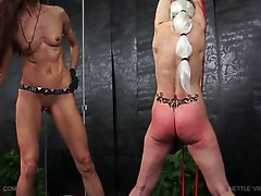 Queensnake.com - Nettle Virgin Greta 1