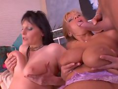 Large melons Filthy bitch Part 3 - Veronica Valley and Allie Cat