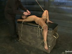 Amazing Skin Diamond demonstrates excellent stamina for pain