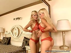 Sophie Moone light-haired rubbing her knockers to the mirror