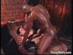 Sensual ebony stallions bangs chesty Cougar