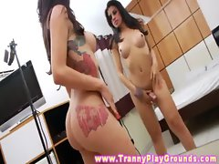 Dark haired shemale solo activity with her own erection