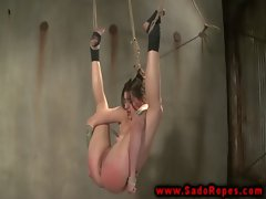 Hogtied suspended sub bdsm session with her master