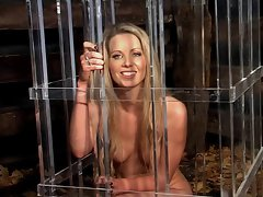 Actress fiona in a cage
