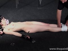 Suspended bondage slave Elise Graves tortured to tears